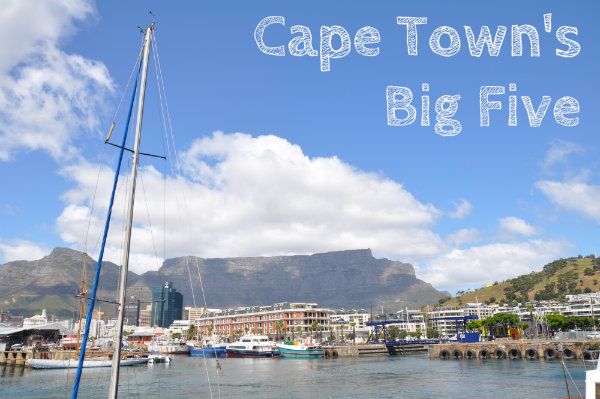 Cape Town's Big Five