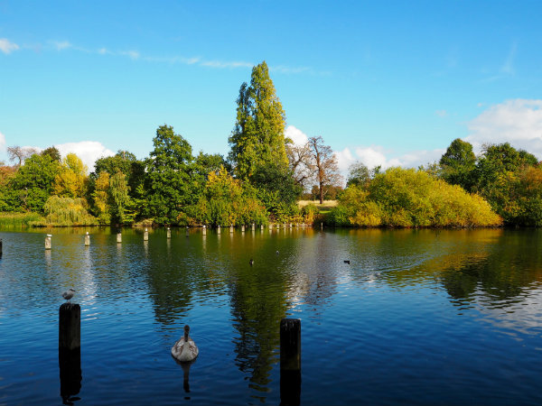 Autumn in London - Hyde Park