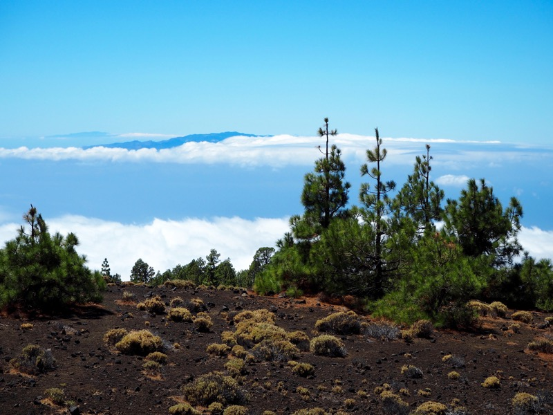 Thoughts I Had in Tenerife - view from above the clouds at Teide National Park
